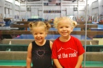 Hahn's gymnastic camp