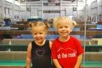 Hahn's gymnastic camp