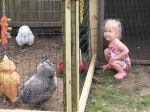 Naomi loved the chickens