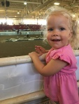 Local horse show